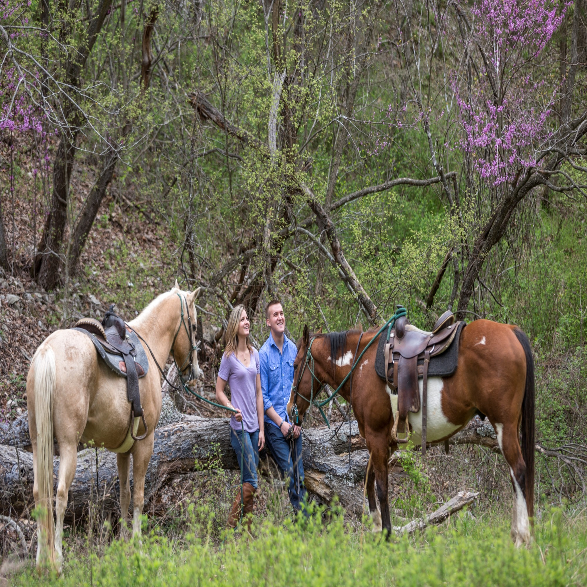 Big Cedar Lodge Trail Rides in Dogwood Canyon