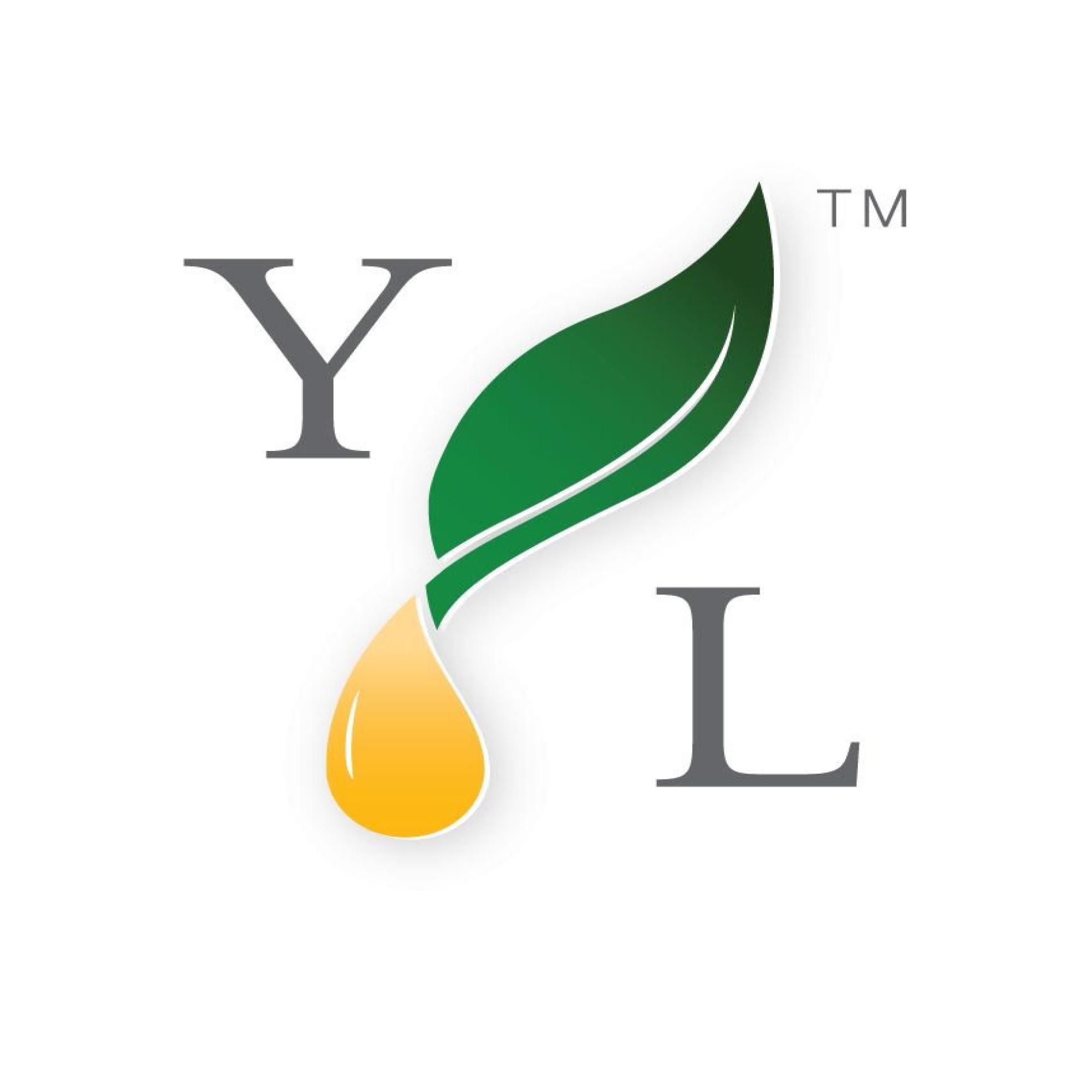YL oil